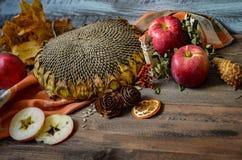 Manzanas rojas del otoño del vintage en fondo de madera Foto de archivo libre de regalías