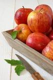 Manzanas rojas del otoño en la bandeja y el cuchillo grises Foto de archivo