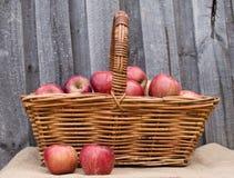 Manzanas rojas en cesta Imagen de archivo