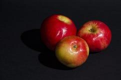Manzanas rojas en fondo negro Imagenes de archivo