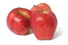 Manzanas rojas en gotas del agua Foto de archivo libre de regalías