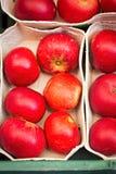 Manzanas rojas en la bandeja del papel foto de archivo