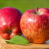 Manzanas rojas en la placa de madera foto de archivo libre de regalías