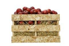 Manzanas rojas en un cajón de madera aislado en blanco Fotografía de archivo