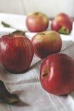 Manzanas rojas en un vector Fotos de archivo libres de regalías