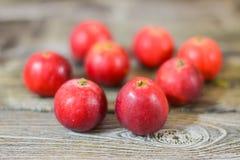 Manzanas rojas en un vector de madera Imágenes de archivo libres de regalías