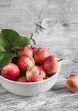 Manzanas rojas frescas en un cuenco blanco Imágenes de archivo libres de regalías
