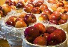Manzanas rojas grandes y sabrosas en cestas Imagenes de archivo