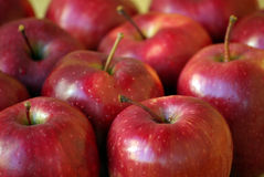 Manzanas rojas jugosas Fotografía de archivo libre de regalías