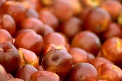 Manzanas rojas maduras Foto de archivo libre de regalías