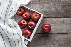 Manzanas rojas maduras en bandeja del abedul a bordo con la servilleta a cuadros roja alrededor y el espacio de la copia para su  Imágenes de archivo libres de regalías
