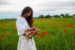 Manzanas rojas maduras sostenidas hacia fuera en la mano de una muchacha asiática en campo verde Concepto sano de la forma de vid imagen de archivo