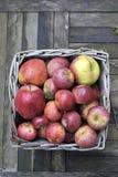 Manzanas rojas orgánicas Foto de archivo libre de regalías
