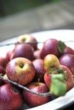 Manzanas rojas orgánicas Fotos de archivo libres de regalías
