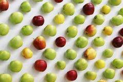 Manzanas rojas, verdes y amarillas en el escritorio blanco Imagenes de archivo