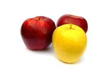 Manzanas rojas y amarillas. Fotos de archivo