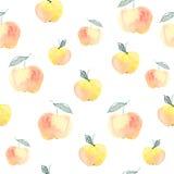 Manzanas rojas y amarillas Fotos de archivo libres de regalías