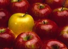 Manzanas rojas y amarillas imágenes de archivo libres de regalías