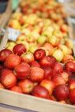 Manzanas rojas y amarillas deliciosas frescas, en el mercado semanal Imagen de archivo libre de regalías