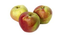 Manzanas rojas y amarillas jugosas en el fondo blanco Fotografía de archivo