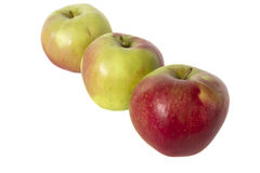 Manzanas rojas y amarillas jugosas en el fondo blanco Fotografía de archivo libre de regalías