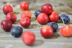 Manzanas rojas y ciruelos maduros en una tabla de madera Fotos de archivo libres de regalías