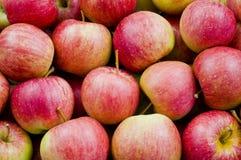 Manzanas rojas y dulces Foto de archivo