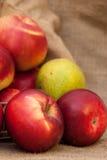 Manzanas rojas y una pera en fondo de la harpillera Fotografía de archivo