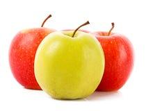 Manzanas rojas y verdes aisladas Imagen de archivo