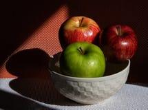 Manzanas rojas y verdes en el sol imágenes de archivo libres de regalías