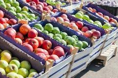Manzanas rojas y verdes frescas para la venta en el mercado Fotografía de archivo