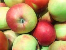 manzanas Rojo-verdes para la venta en el mercado de los granjeros Imagenes de archivo