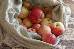 Manzanas rústicas en un bolso áspero de la tela Productos rurales naturales Frutas ecológicas sin los pesticidas y los GMOs Imagenes de archivo