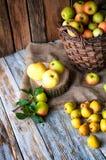 Manzanas salvajes y peras en cesta Foto de archivo