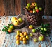 Manzanas salvajes y peras en cesta Foto de archivo libre de regalías