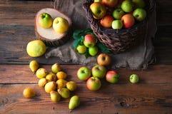 Manzanas salvajes y peras en cesta Fotos de archivo libres de regalías