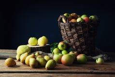 Manzanas salvajes y peras en cesta Imagen de archivo libre de regalías