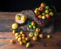 Manzanas salvajes y peras en cesta Imagen de archivo