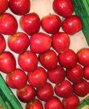Manzanas sanas fotos de archivo