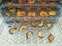 Manzanas secadas apenas extraídas de la secadora de la fruta fotos de archivo