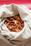 Manzanas secadas en el saco Imágenes de archivo libres de regalías
