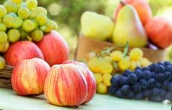 Manzanas, uvas y peras Imágenes de archivo libres de regalías