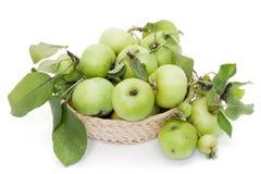 Manzanas verdes en cesta Foto de archivo libre de regalías