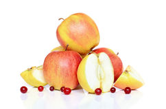 Manzanas y arándanos Fotos de archivo