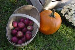 Manzanas y calabaza Fotos de archivo