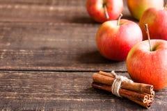 Manzanas y canela frescos Fotografía de archivo