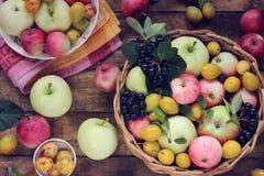 Manzanas y ciruelos en la tabla, visión superior Vida de la tabla-aún Imágenes de archivo libres de regalías