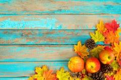 Manzanas y conos del pino en la tabla de madera sobre las hojas de arce Foto de archivo libre de regalías