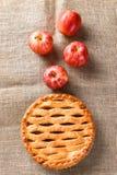 Manzanas y empanada Imágenes de archivo libres de regalías