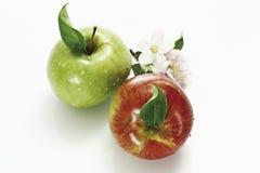 Manzanas y flor rojos y verdes de la manzana, visión elevada Imagen de archivo libre de regalías